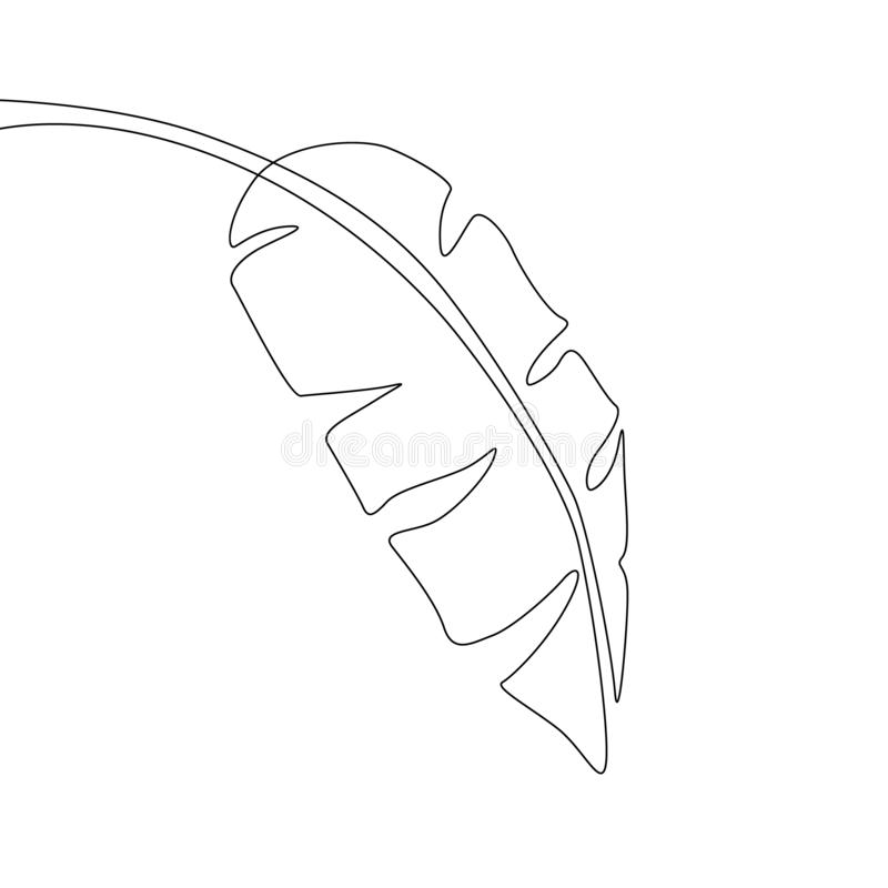 Одна линия лист банана чертежа Непрерывная линия экзотический тропический завод иллюстрация вектора