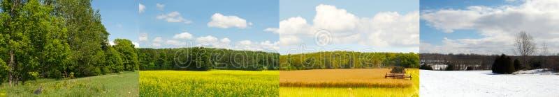 Одно поле, 4 сезона. стоковые изображения rf