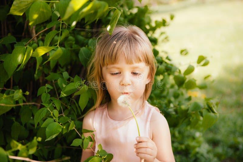 Одуванчик красивой маленькой девочки дуя outdoors в лете стоковое фото