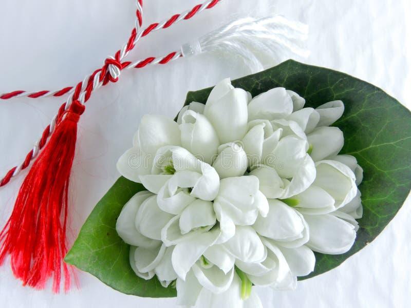 1-ое из snowdrops традиции в марте белых и красных шнура и ghiocel цветут стоковая фотография rf