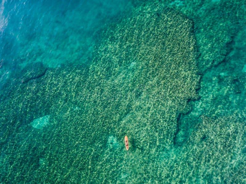 15-ое мая 2016, Haleiwa Гаваи Вид с воздуха неизвестного стоит вверх пансионер затвора занимаясь серфингом в океане стоковые фотографии rf