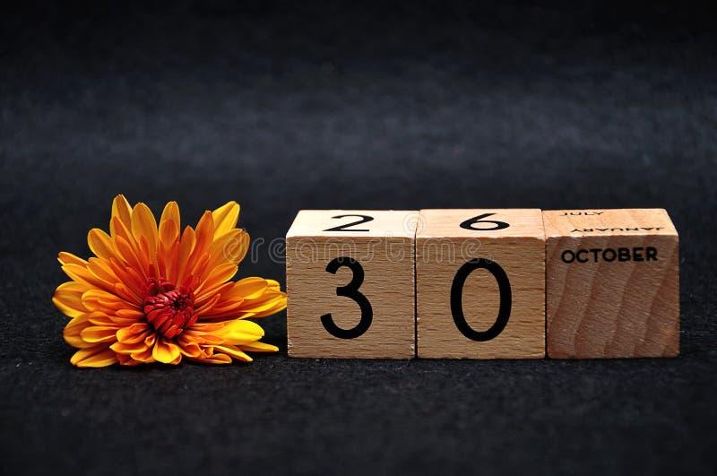 30-ое октября на деревянных блоках с оранжевой маргариткой стоковые фотографии rf