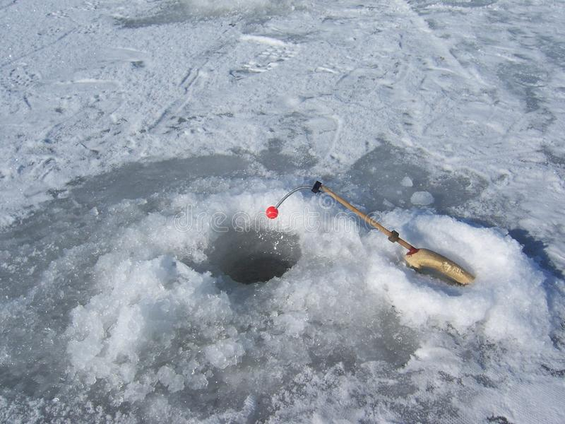 лож льда рыболовства как раз поглотили zander зимы стоковое изображение rf