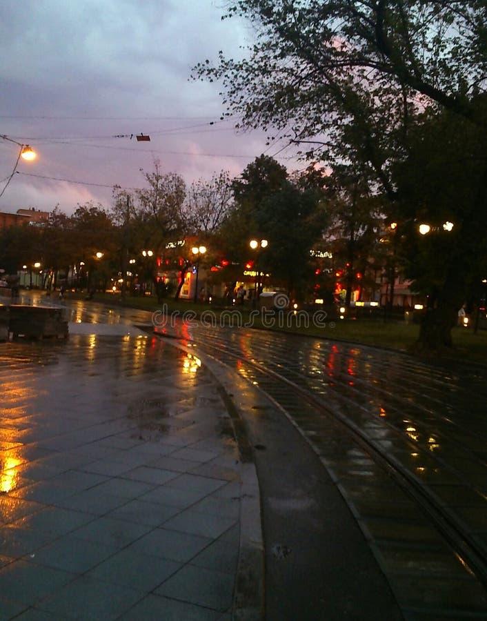 дождь стоковое фото