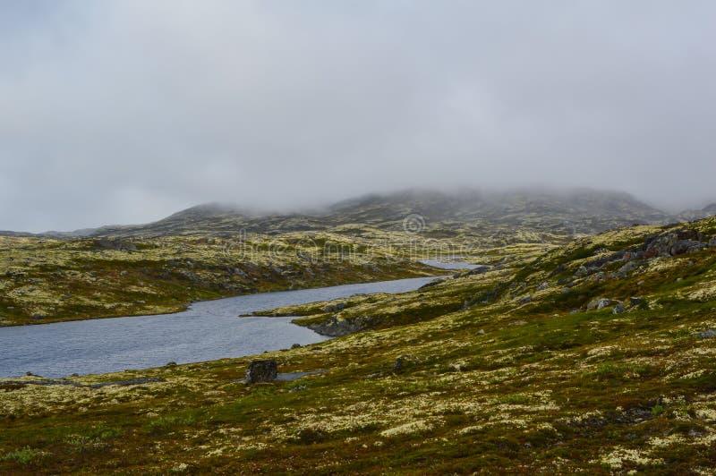 Озера в тундре стоковое фото