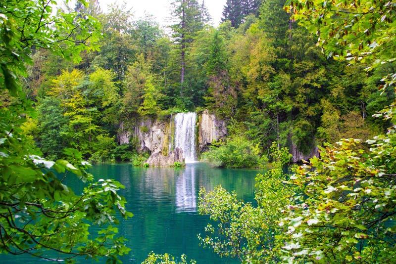 Озера национальный парк Plitvice, Хорватия Взгляд красивого водопада через деревья стоковое фото rf