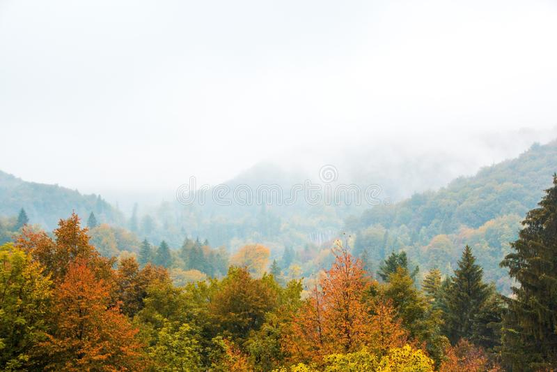 Озера национальный парк Plitvice, Хорватия r Золотые деревья, туман, горы и водопад стоковое фото rf