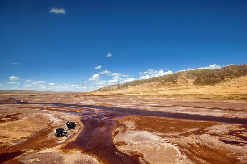 Озера плато стоковые фото