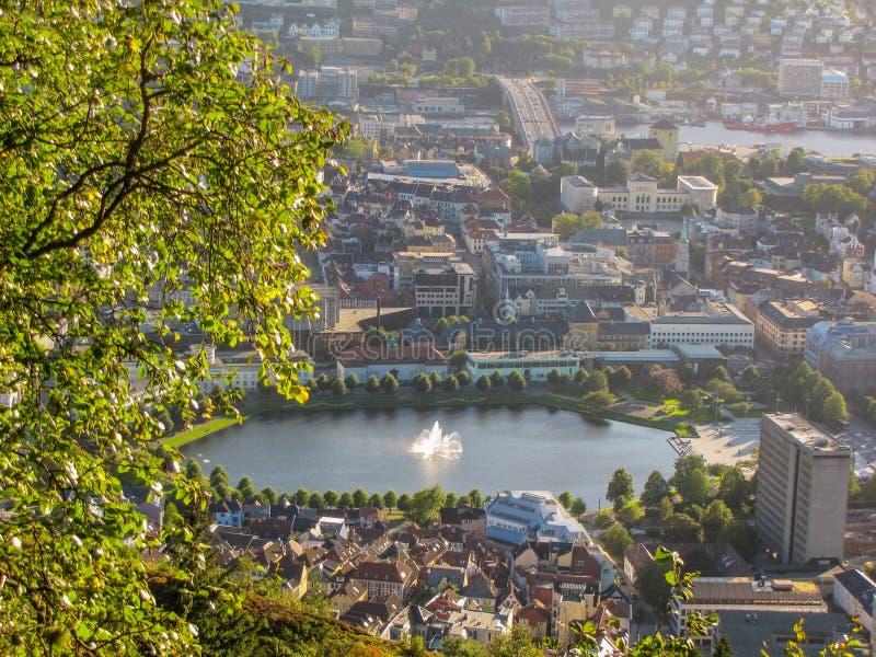 Озеро Берген стоковые изображения rf