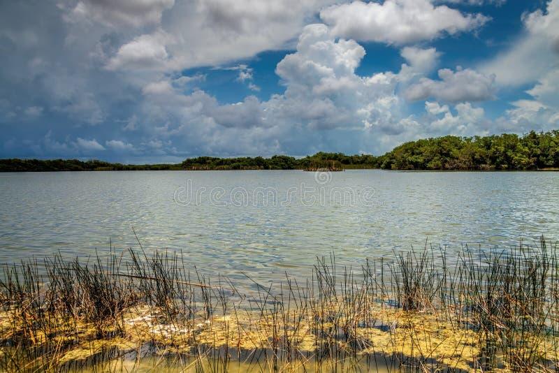 Download Озеро болотистая низменность Стоковое Изображение - изображение насчитывающей образования, напольно: 41658653