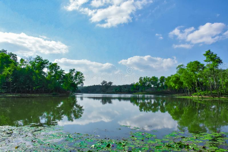 Озеро воды внутри кафе на открытом воздухе стоковое фото rf