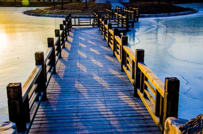 Озеро в зиме стоковые изображения