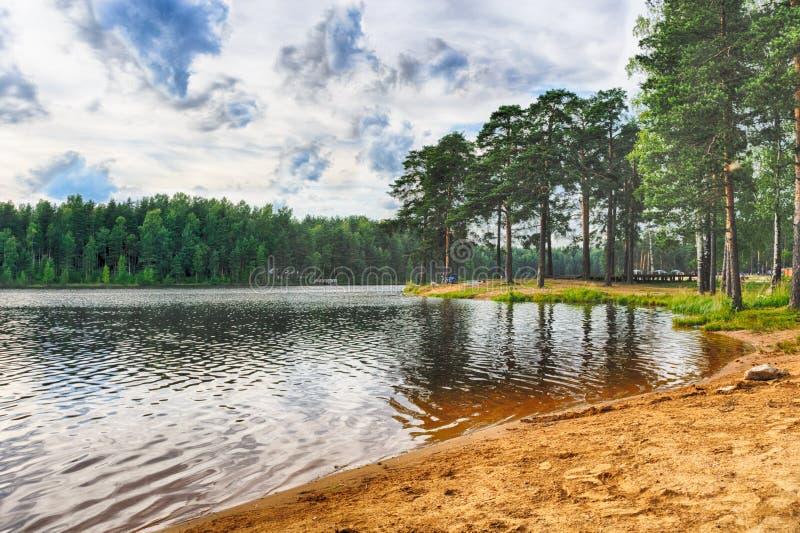 Озеро в пуще стоковое фото