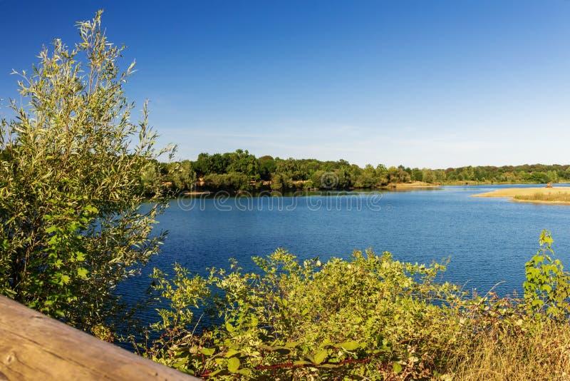 озеро в середине красивого заповедника, мирный и тихий стоковое фото rf