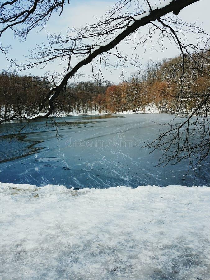 Озеро в снеге стоковая фотография