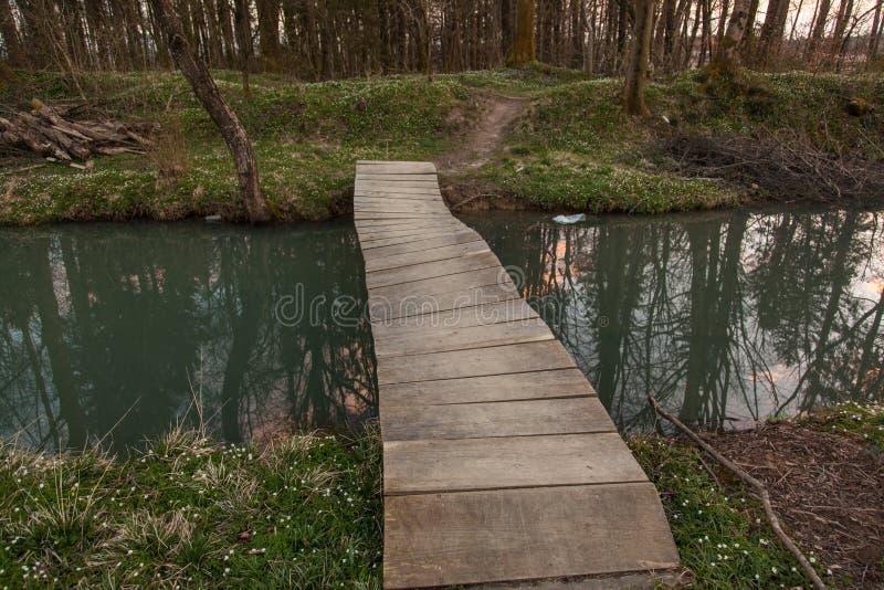 Озеро в Preddvor стоковое изображение