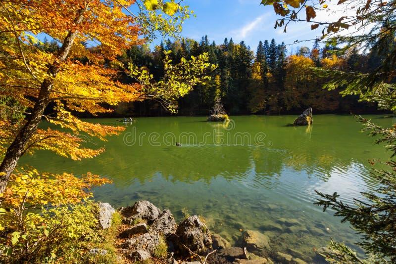 Озеро горы цвета осени падения сценарное стоковое фото