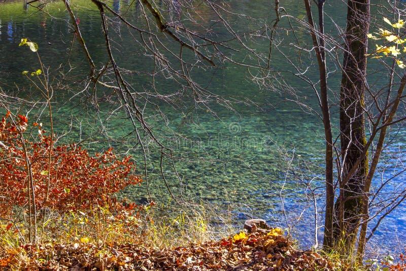 Озеро гор с чистой водой вокруг леса осени в Альпах стоковое изображение