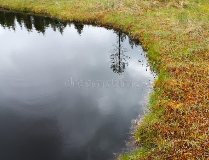Озеро глуш стоковые изображения rf