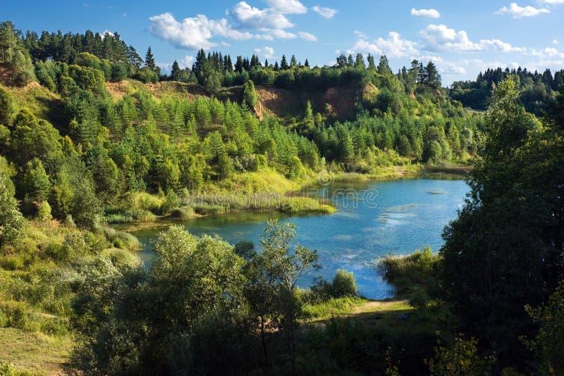 Озеро лес в покинутом карьере стоковое изображение