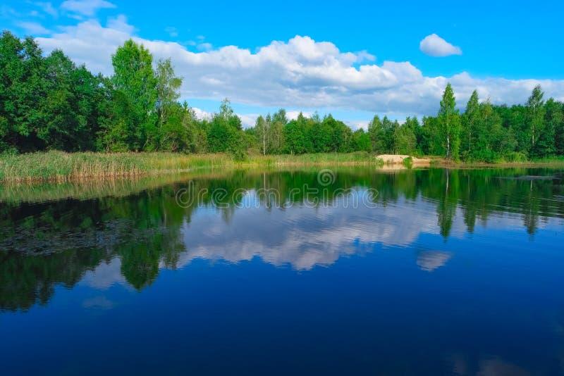 Озеро лес и голубое облачное небо стоковое изображение rf
