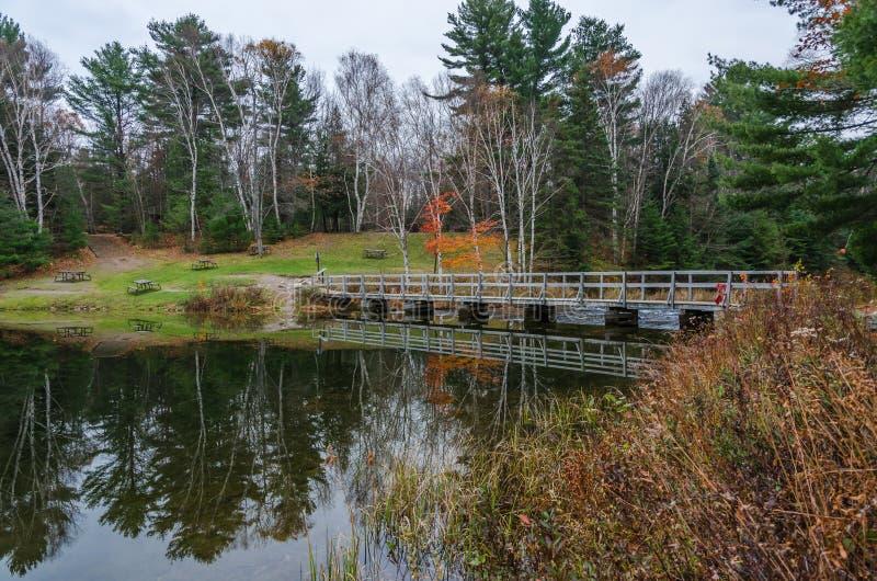 Download Озеро лес стоковое изображение. изображение насчитывающей листво - 81808597