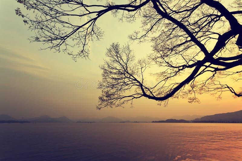 Озеро заход солнца западное в Ханчжоу стоковые изображения