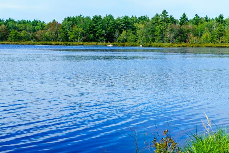Озеро змейк, в национальном парке Kejimkujik стоковое изображение rf