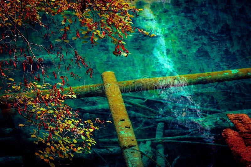 Озеро и деревья в Jiuzhaigou Valley, Сычуань, Китае стоковая фотография rf