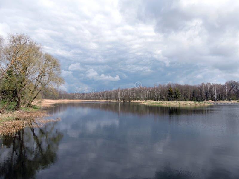 Озеро и деревья, Литва стоковое изображение