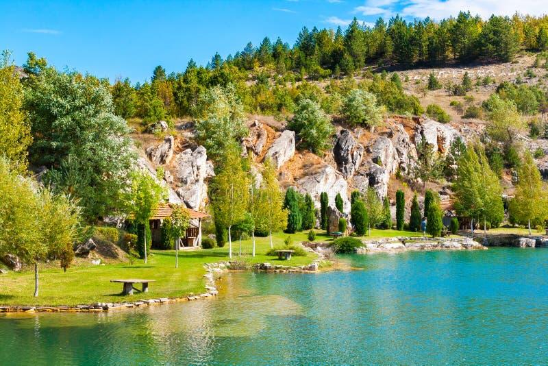 Озеро и зеленый ландшафт деревьев с горами стоковые изображения rf