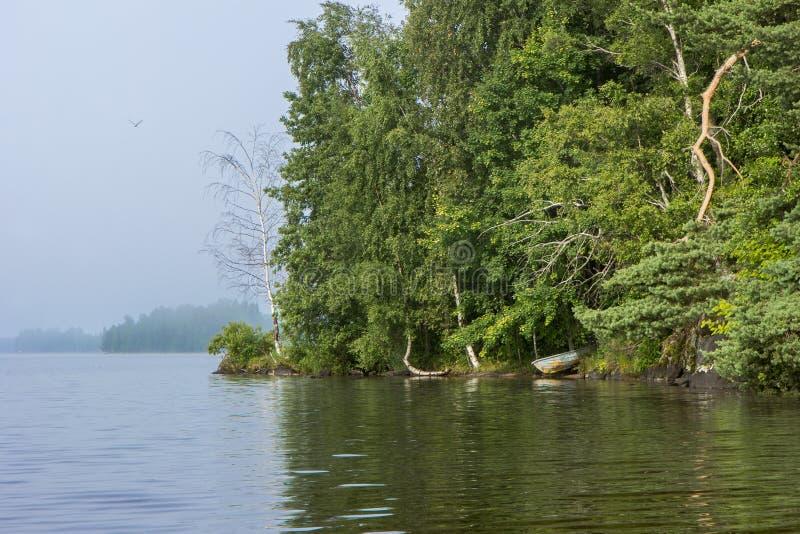 Озеро и сочный лес в Финляндии в лете стоковое изображение