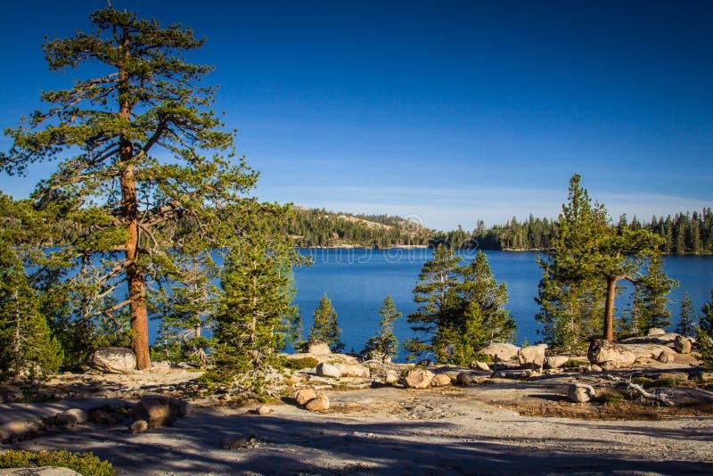 Озеро Калифорния утр светлое серебряное стоковые изображения rf