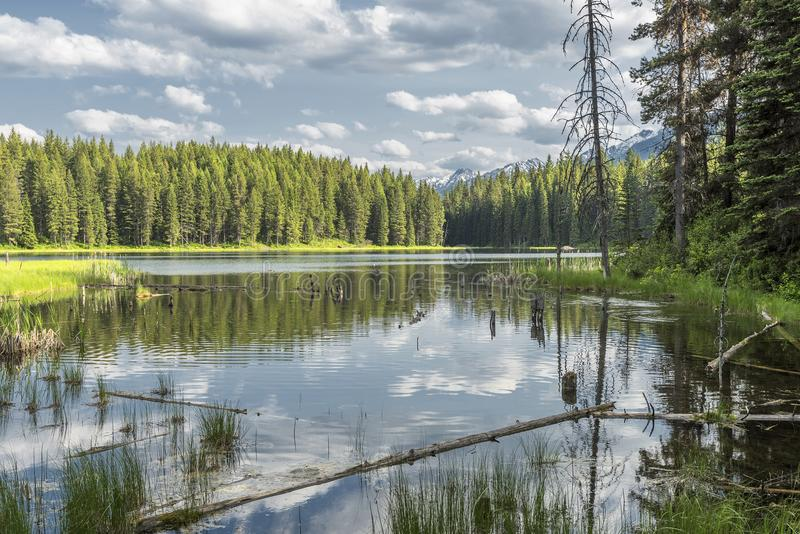 Озеро кедр, Британская Колумбия, Канада стоковые фото