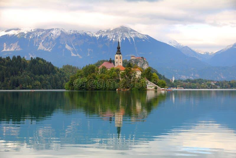 Озеро кровоточенное с островом, Словенией стоковые фотографии rf