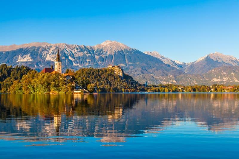 Озеро кровоточило, Словения стоковое фото rf