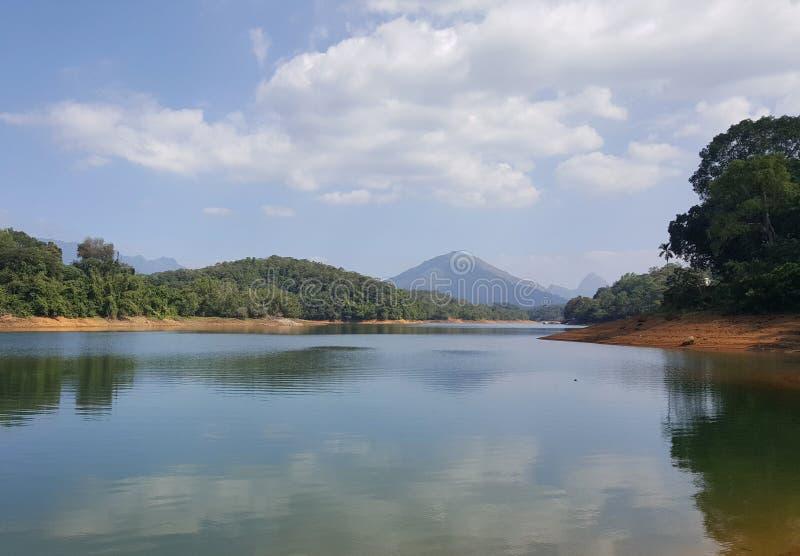 Озеро крокодил стоковые фотографии rf