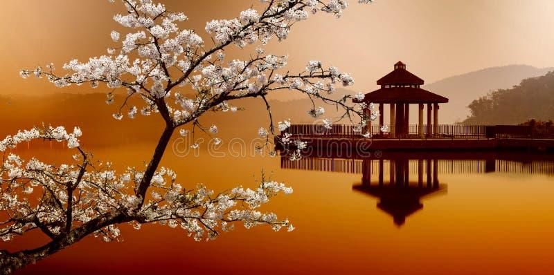 ОЗЕРО ЛУНЫ СОЛНЦЯ, Тайвань стоковое фото rf