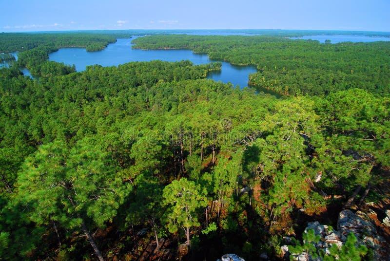 Озеро Мартин стоковые фотографии rf