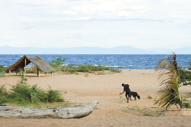 Озеро Малави - Малави стоковое изображение rf
