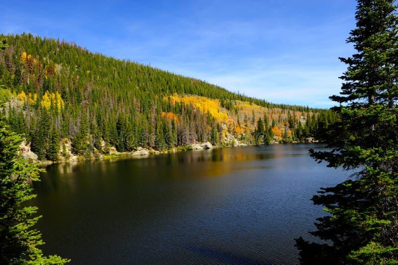 Озеро медвед в падении стоковая фотография rf