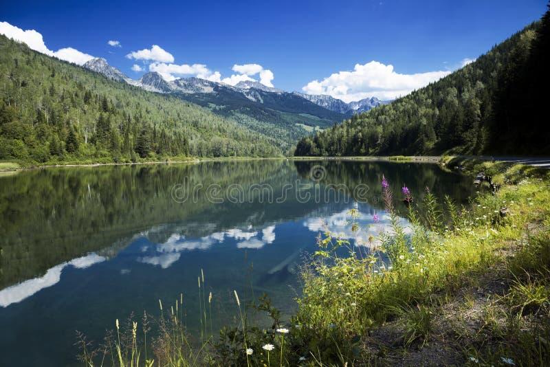 Озеро медвед стоковое фото