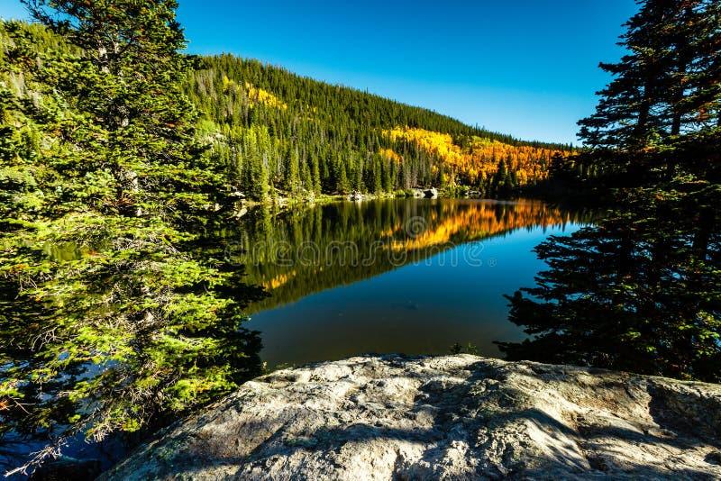 Озеро 2 медвед стоковые изображения rf