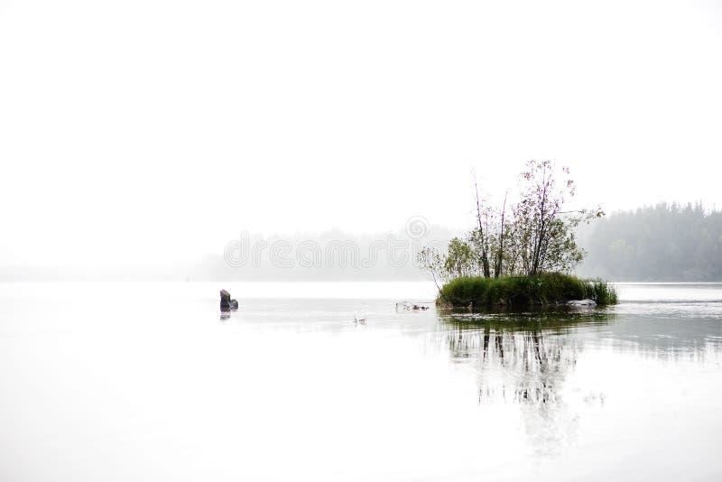 озеро мирное стоковое изображение