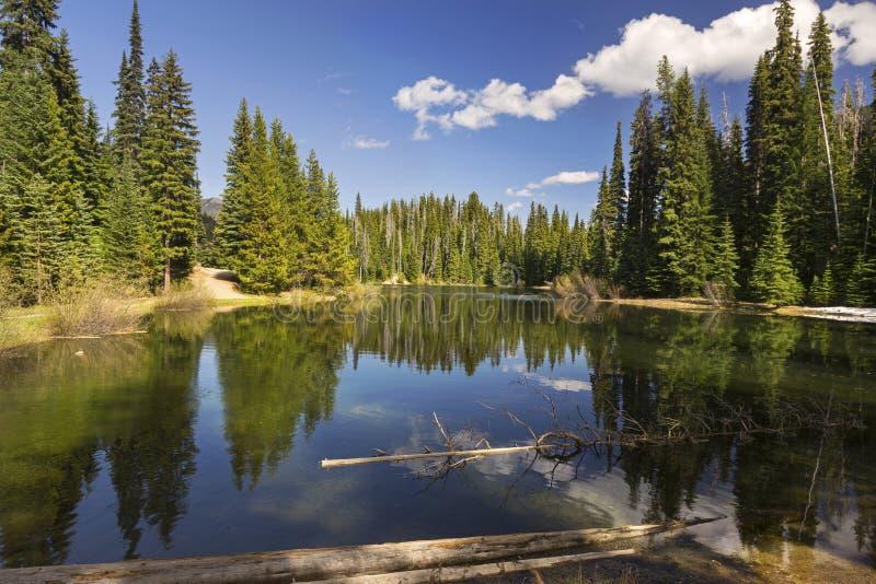 Озеро молни укомплектовывая личным составом Британскую Колумбию Канаду парка стоковые фотографии rf