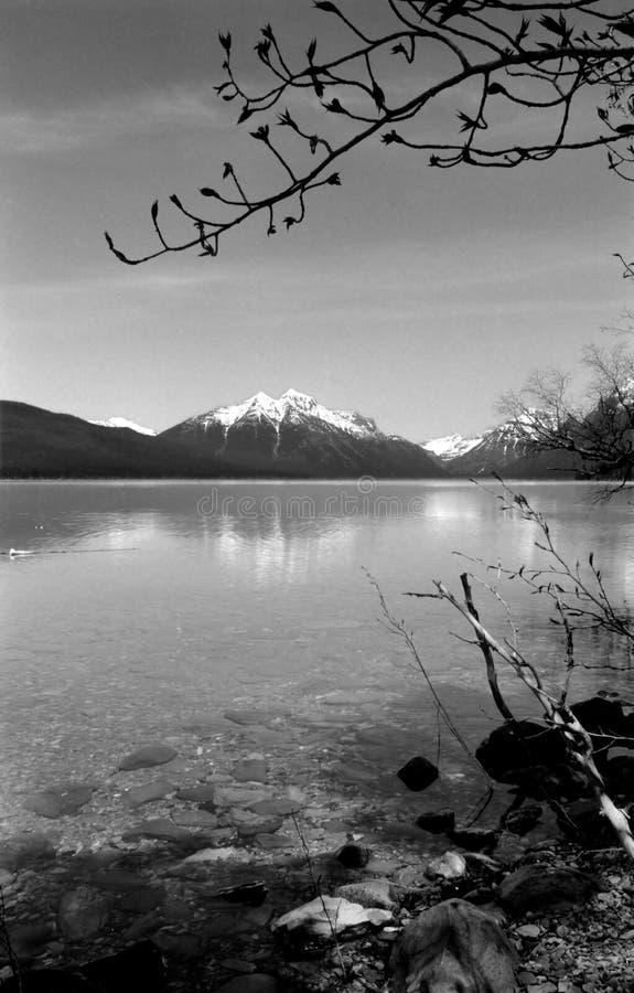 озеро Монтана стоковое фото rf