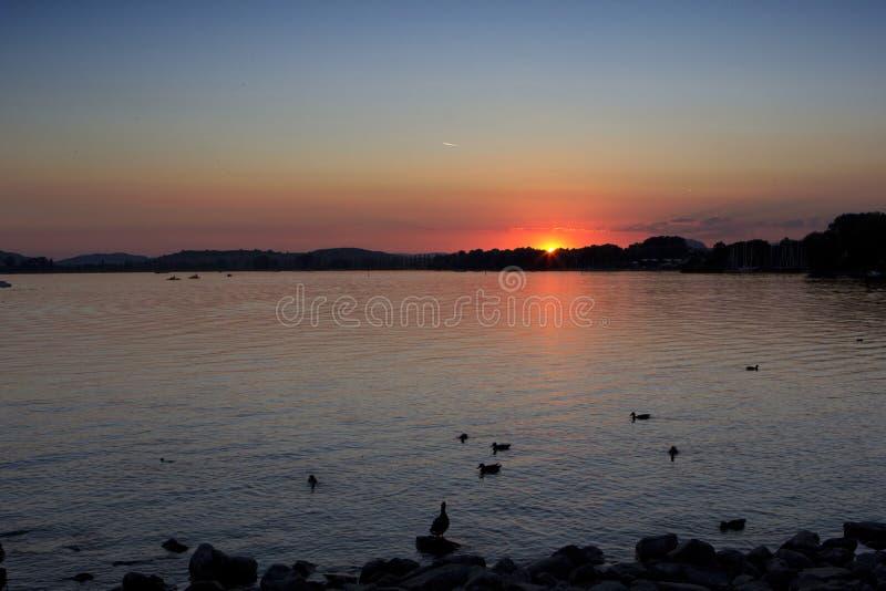 Озеро, море стоковое изображение rf