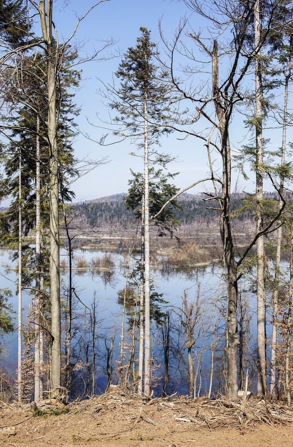 Озеро накопления Sesonal стоковая фотография