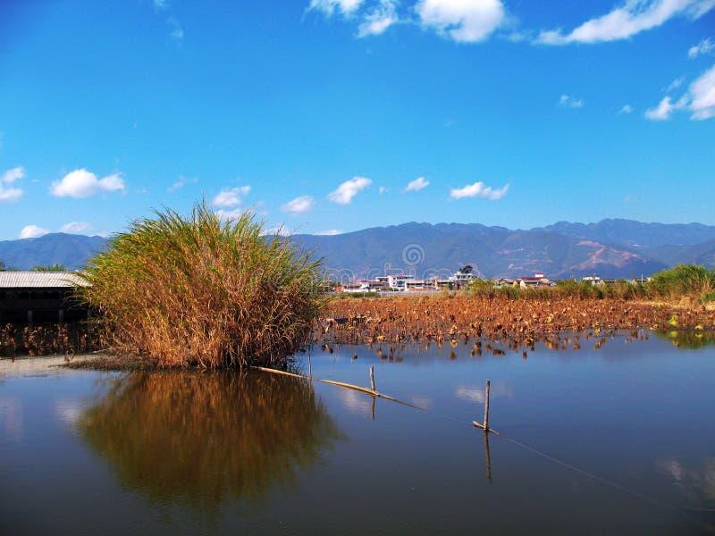 Озеро на голубом небе стоковое изображение rf