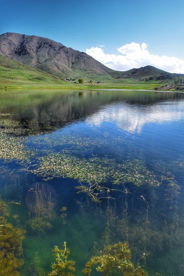 Озеро на горе стоковое фото rf